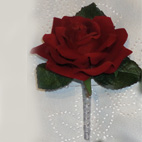 Deep Red Rose Buttonhole