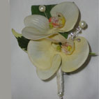 Real Touch Cream Phalaenopsis Orchid Buttonhole